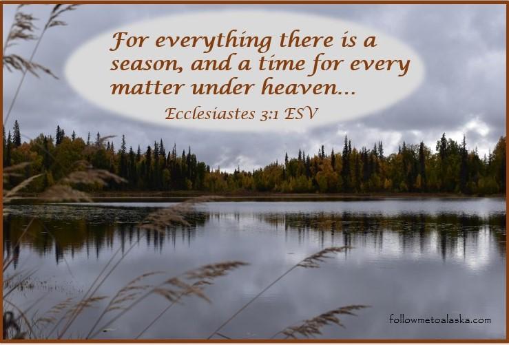 Ecclesiastes 3:1 ESV